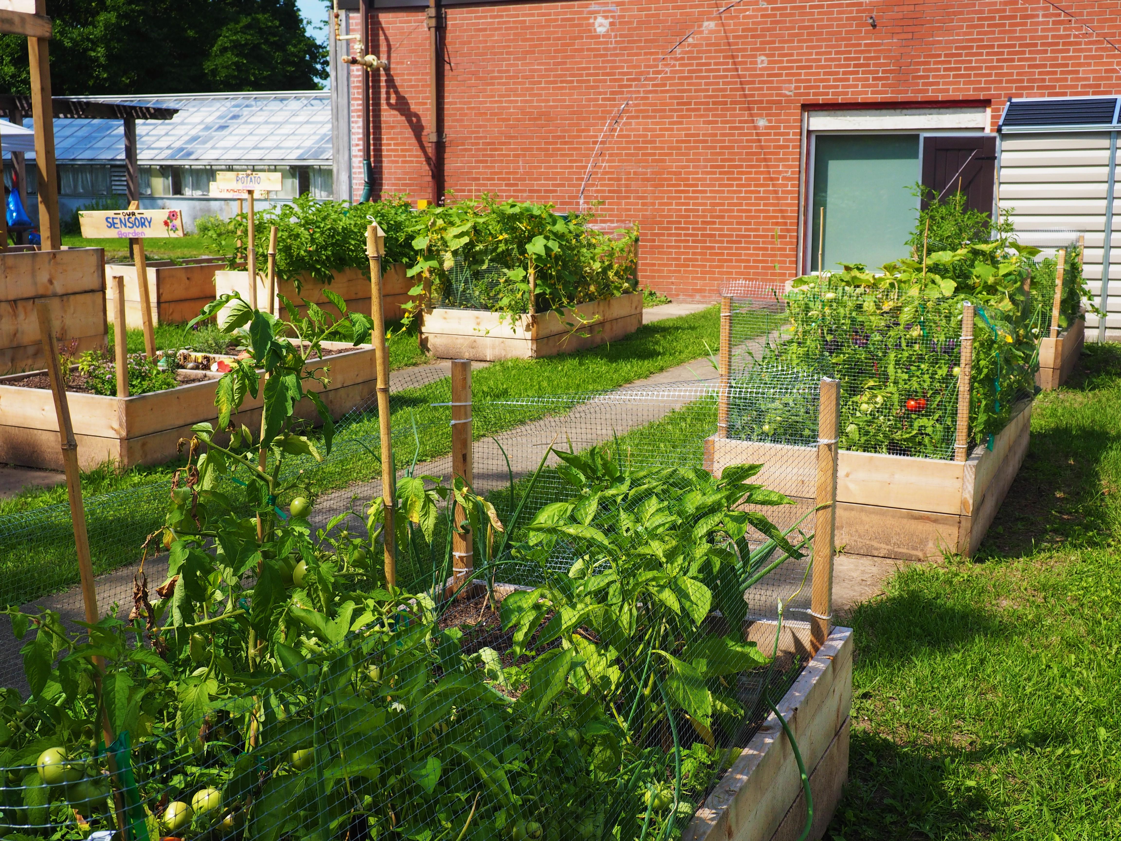 LGL Community Garden